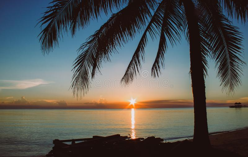 Sunset on the sea view from a tropical beach with palm tree silhouette royalty free stock image