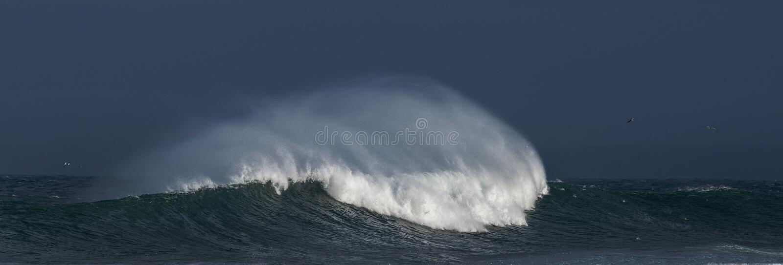 Sunset Seascape. Powerful ocean wave on the surface of the ocean. Wave breaks on a shallow bank. Stormy weather, stormy clouds sky. Background royalty free stock image