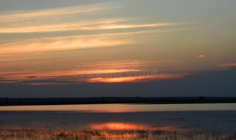 Sunset on the seashore. A tall blue evening sky, dotted with pink stripes of the setting sun. Reflection of the sun in calm sea water. Coastal vegetation. Plants royalty free stock images