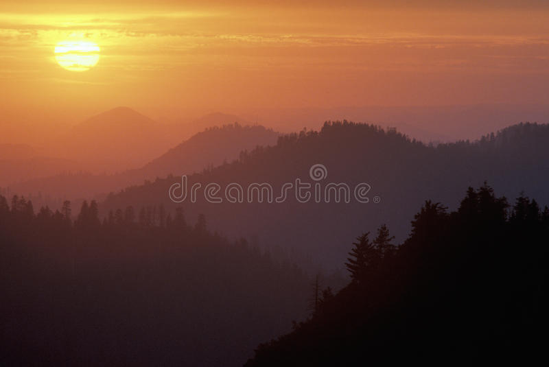 Sunset in the Sequoia National Park, California stock photography