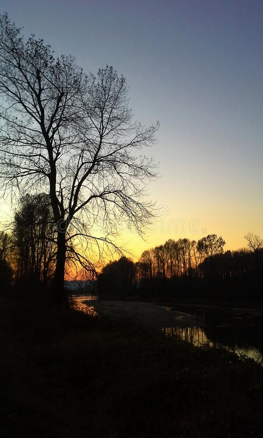 Sunset Serenity. A river slowly winds through the forest to the setting sun stock photography