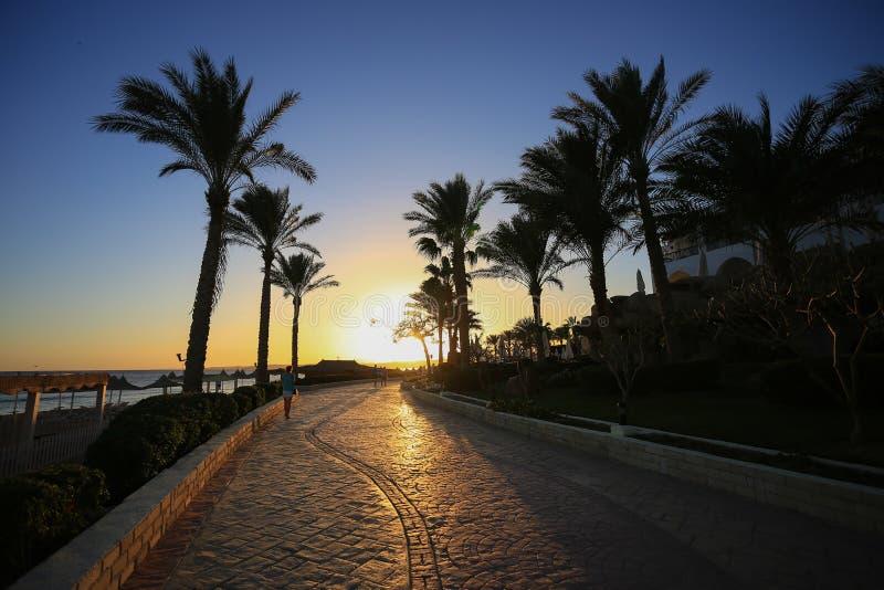 Sunset in Sharm el Sheikh. Resort stock photo