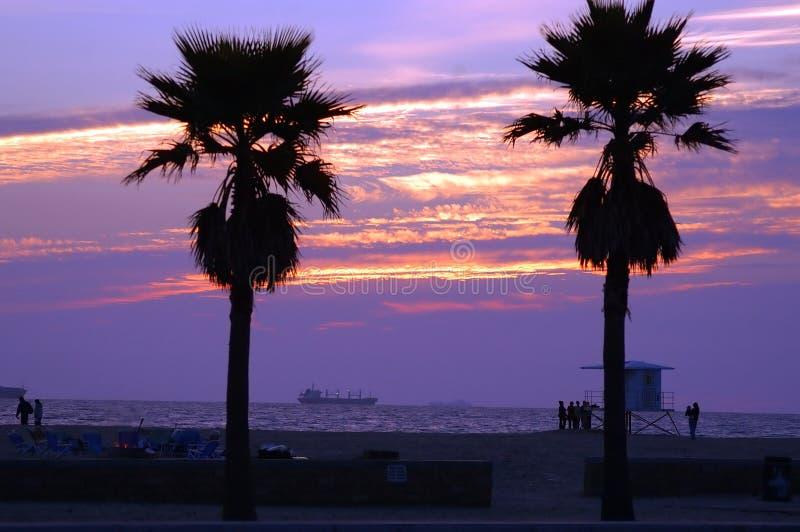 Download Sunset Shipping stock image. Image of boating, palm, dusk - 34733
