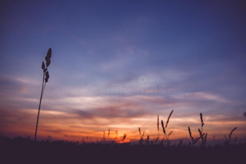 Sunset sky clouds.Countryside Landscape Under Scenic Colorful Sky At Sunset Dawn Sunrise. Sun Over Skyline, Horizon stock images