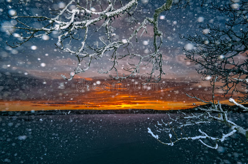 Sunset through snowfall. Sunset over lake seen through the branches of a tree during snowfall royalty free stock photos