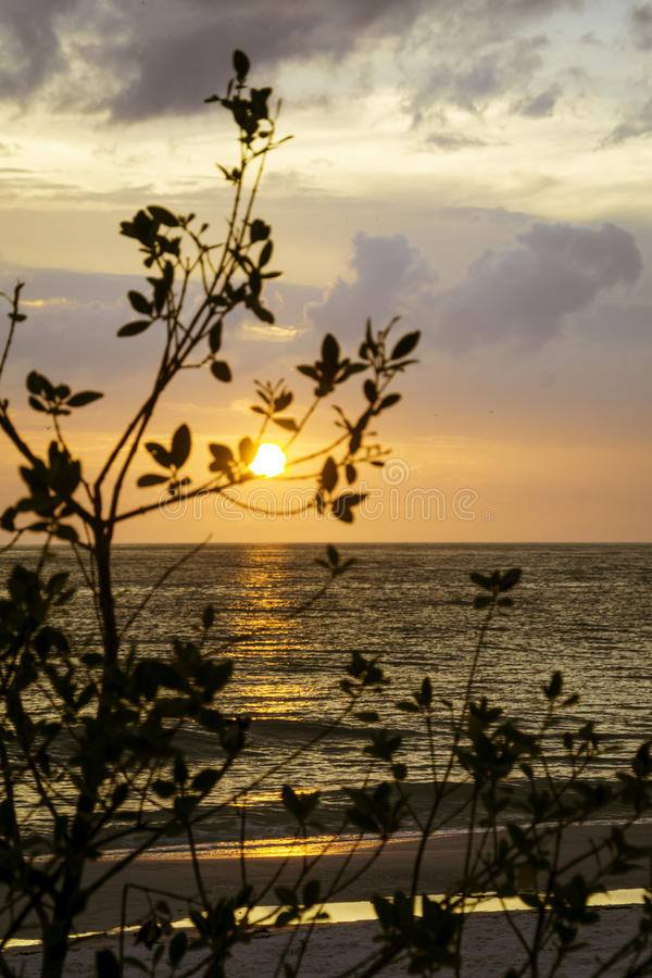Sunset at St. Pete. On the Gulf coast of Florida royalty free stock images