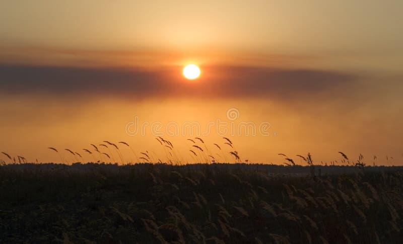 sunset stepowy obraz royalty free