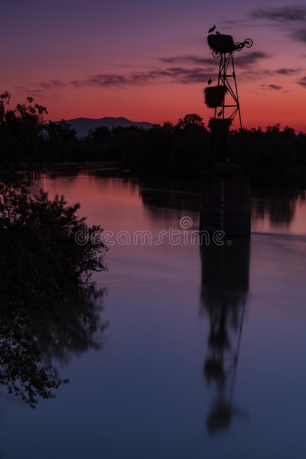 Sunset storks & the river royalty free stock photo