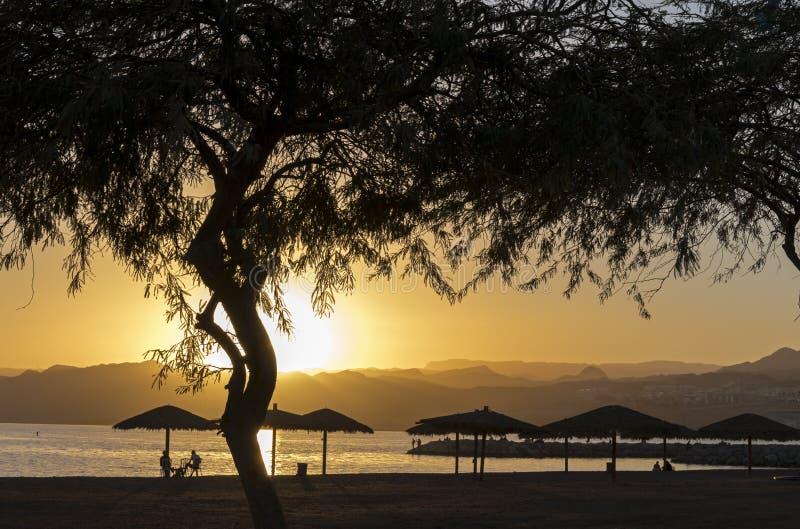 Sunset on the strand of Eilat royalty-vrije stock fotografie