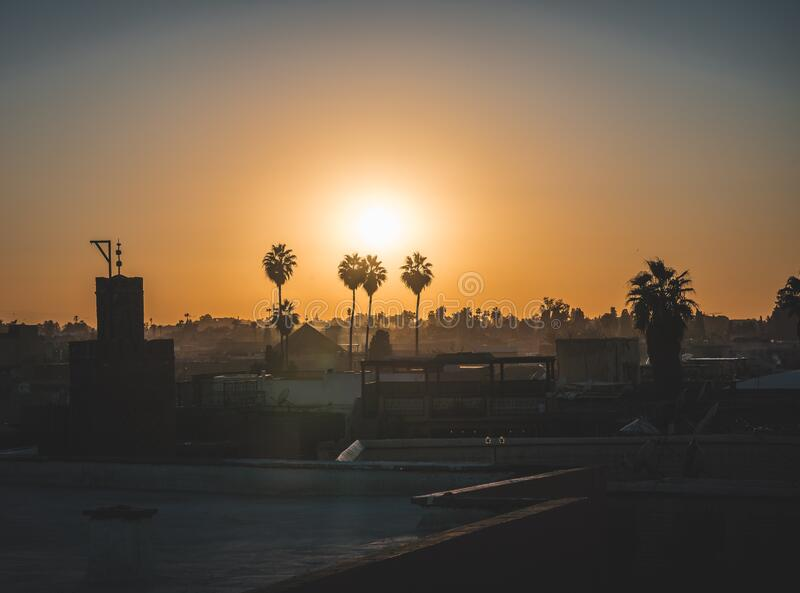 Sunset sunrise over the palm grove in Marrakesh, Morocco. Palmeraie - silhouette of palm trees with sun behind. Summer. Travel concept photo in Africa. Photo royalty free stock image