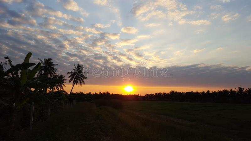 The sunset royalty free stock photography