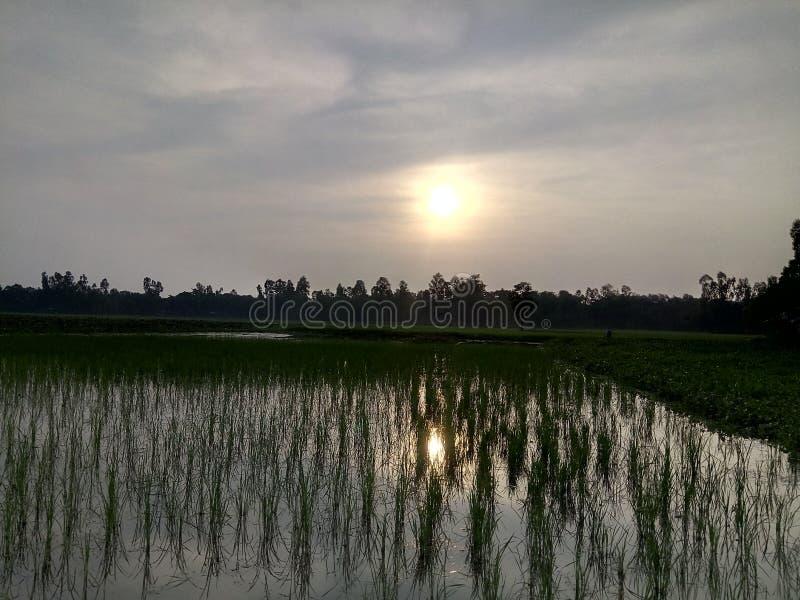 Sunset. In a rural area of kurigram Bangladesh stock photos