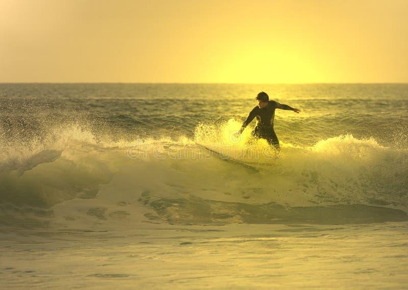 sunset surfera zdjęcie royalty free