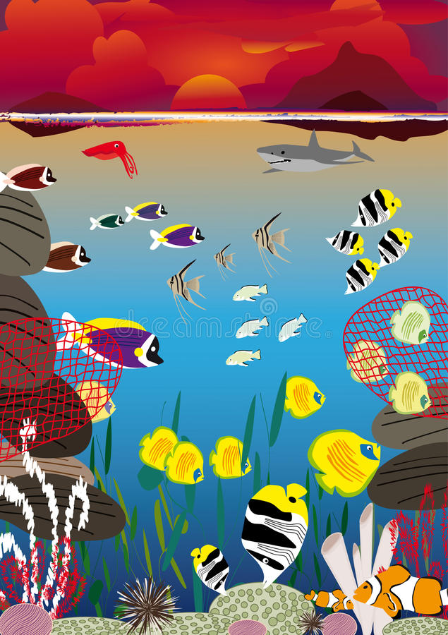 Sunset swimming fish vector illustration