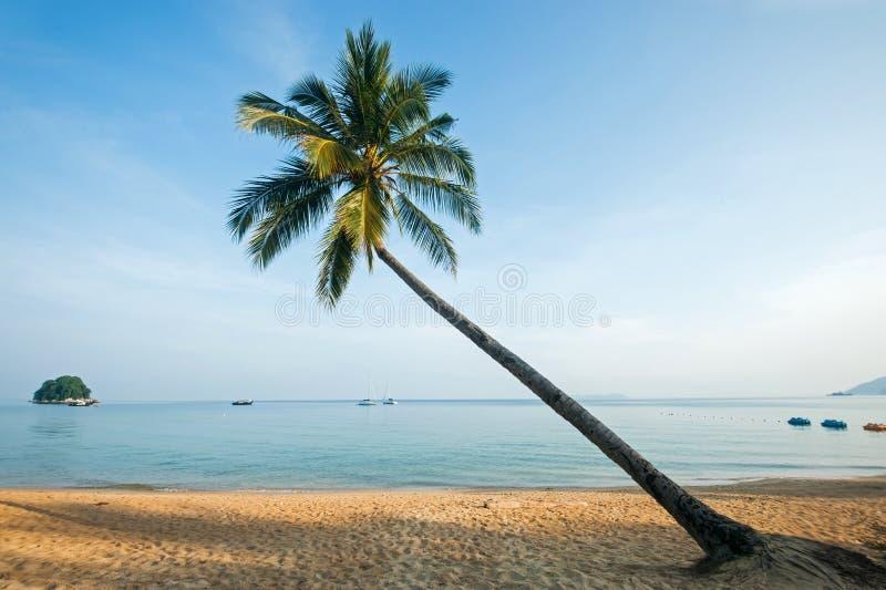 Download Sunset In Tioman Island, Malaysia Stock Photo - Image: 29258264