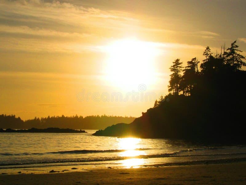 sunset tofino fotografia stock