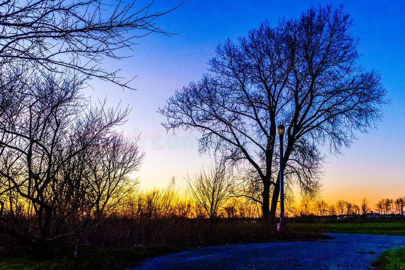 Sunset through a tree in Calvert Vaux Park. Brooklyn NY stock photography