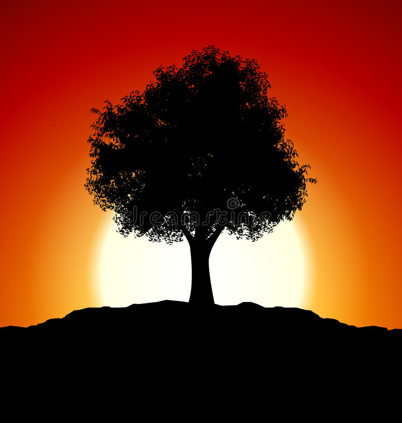 Download Sunset With Tree Silhouette Stock Illustration - Illustration of nature, colorful: 25899060
