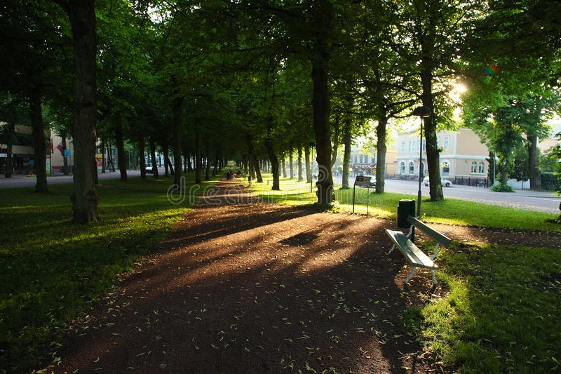 Sunset in centrum city of Marienhamn. Sunset in trees in centrum city of Marienhamn royalty free stock photos