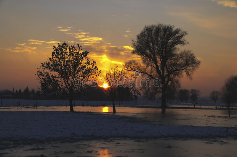 Download Sunset Between Trees And With Snowy Surface Stock Photo - Image: 23429824