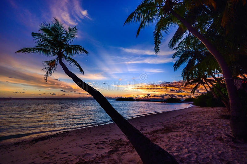 Sunset On A Tropical Beach stock photography