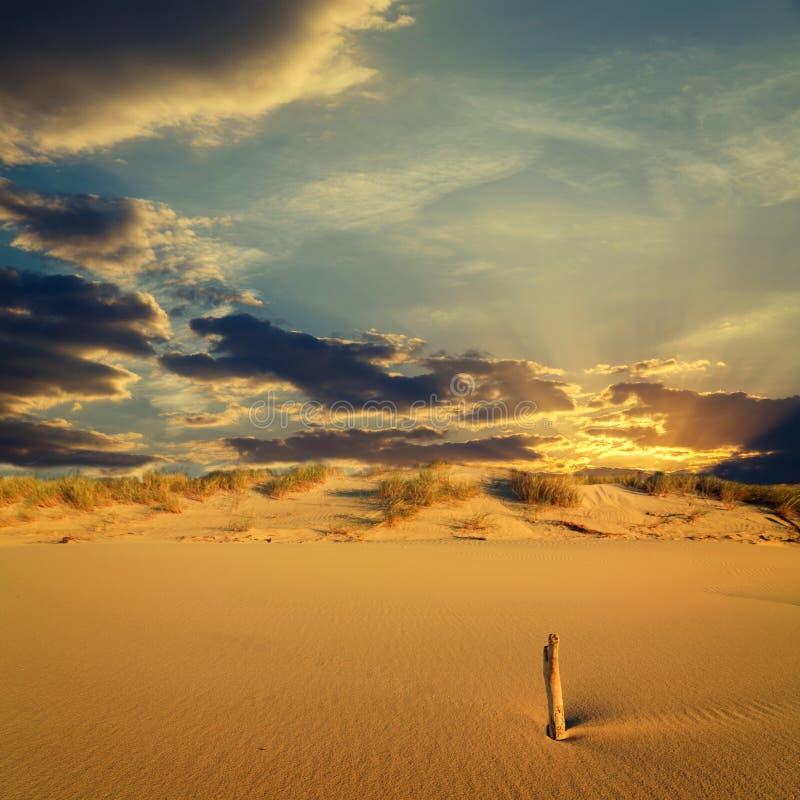 sunset tropikalne niebo obraz stock