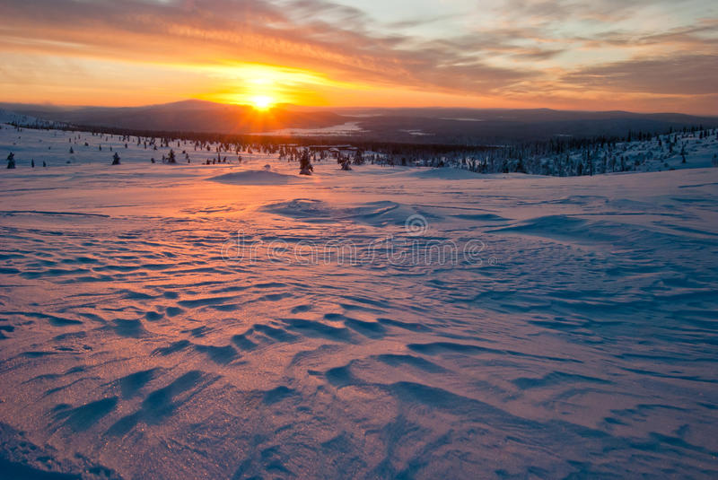Sunset in the tundra royalty free stock image