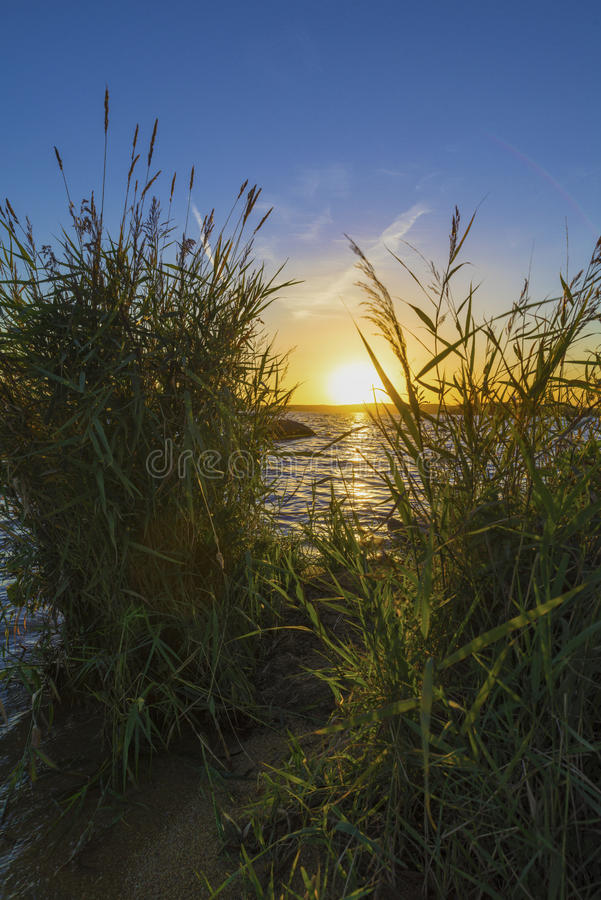 Sunset on the Upper Iset pond royalty free stock image