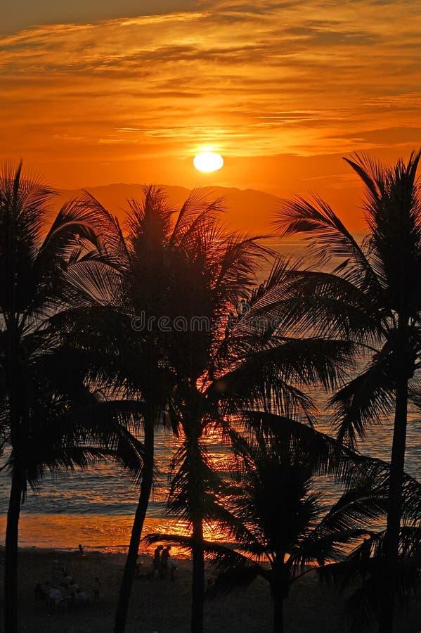 Sunset_vallarta foto de archivo libre de regalías