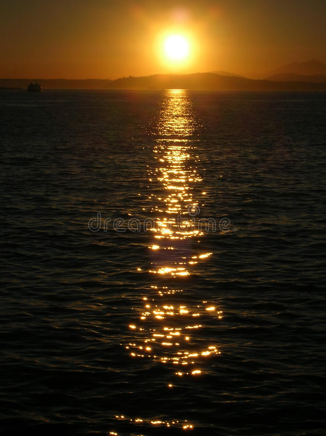 Sunset Vertical royalty free stock images