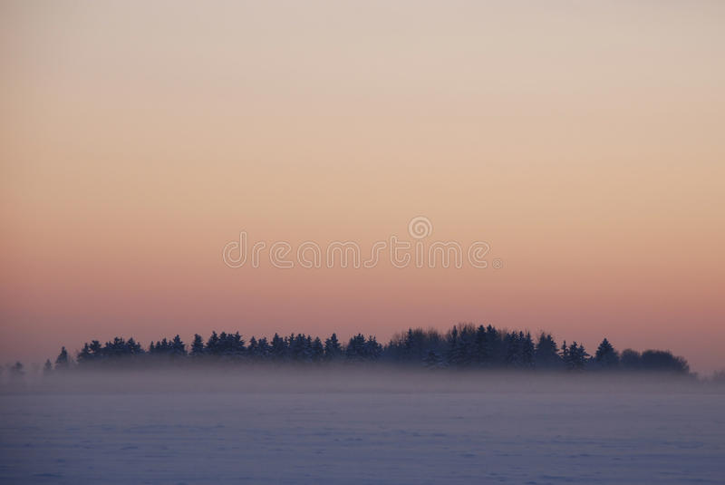 Crispy dusk. After sunset on a very cold winter day royalty free stock image