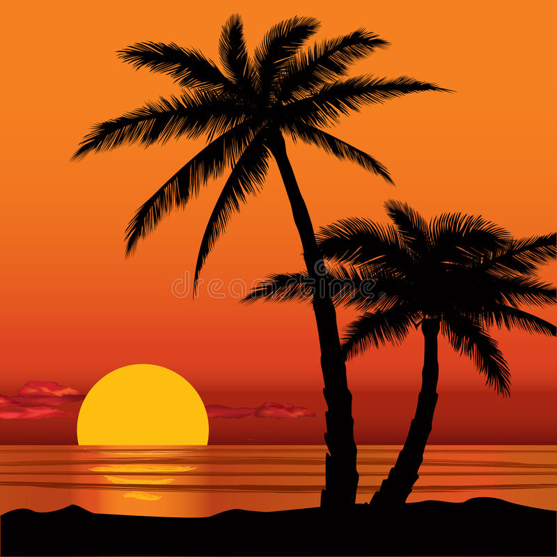 how to draw a palm tree sunset