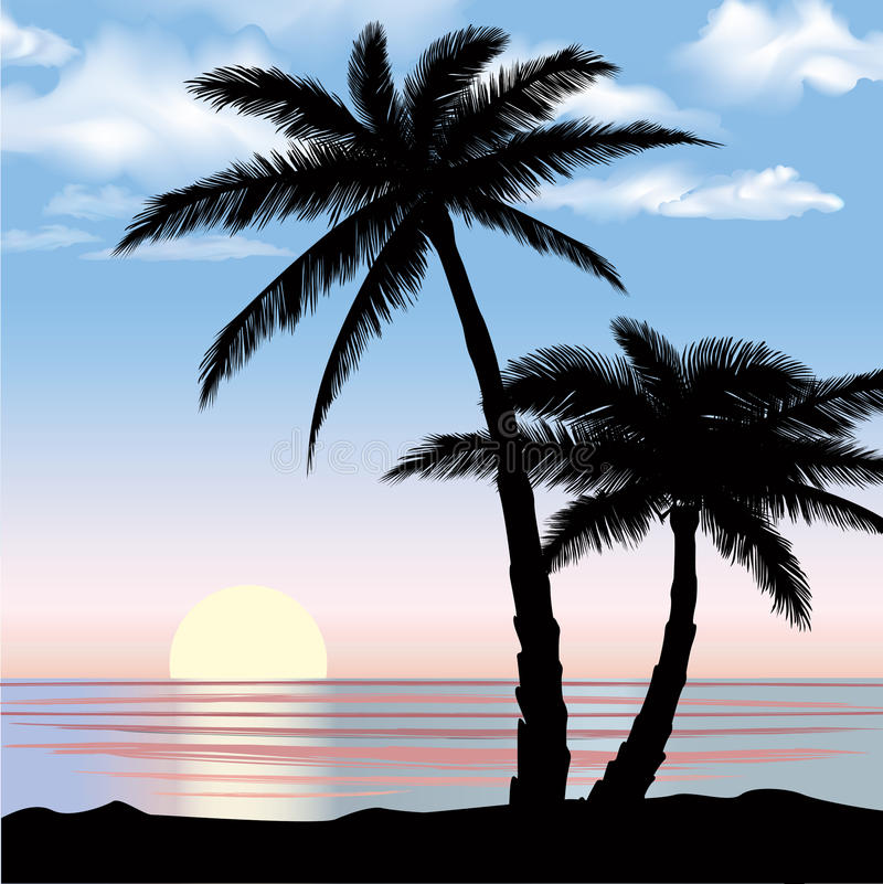 Sunset View Beach Resort With Palm Trees Wallpaper. Royalty Free Stock Photo
