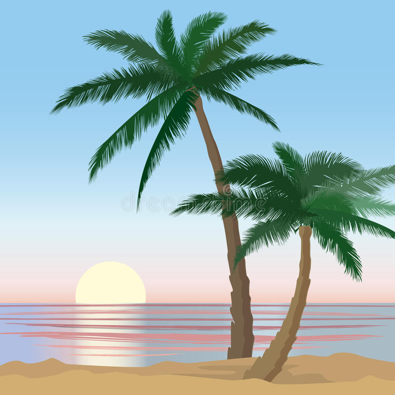 Sunset View Beach Resort With Palm Trees Wallpaper. Stock