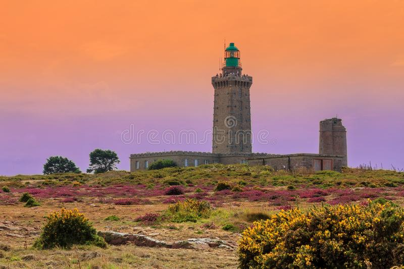 Sunset view Cap Fréhel lighthouses. Beautiful sunset view of the lighthouses at Cap Fréhel in Brittany, France, with vibrant heather flowers Calluna stock photography