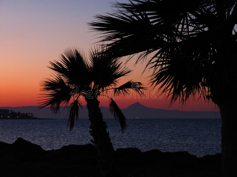 Sunset view from Denia, Spain. Outlines of dwarf palms. Sunset view from Denia, Spain. Romantic sky and outlines of dwarf palms stock photography