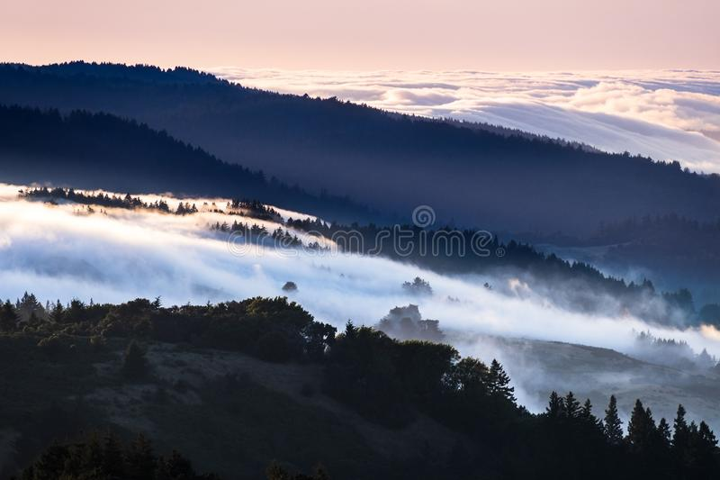 Sunset view of fog and clouds covering valleys in the Santa Cruz mountains; sea of clouds and pink sky illuminated by the setting royalty free stock photo
