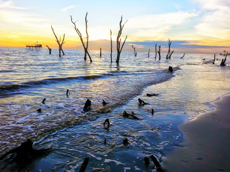 Sunset view at Tanjung Sepat royalty free stock photo