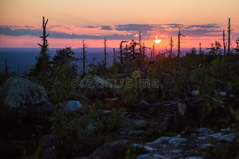 Sunset on Vottovaara mount. Republic of Karelia, Russia royalty free stock photo