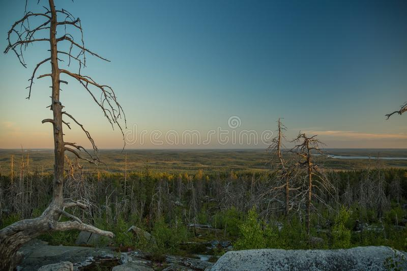 Sunset on Vottovaara mount. Republic of Karelia, Russia stock images