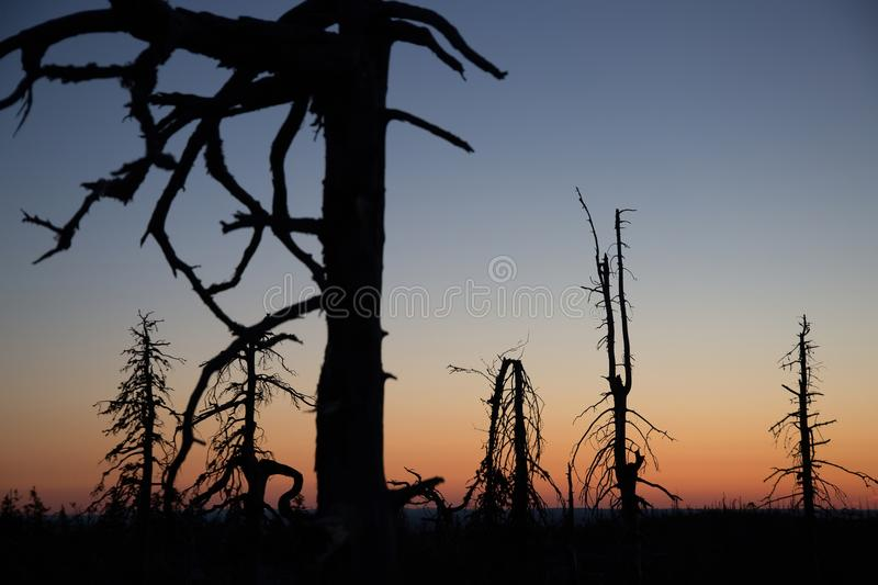 Sunset on Vottovaara mount. Republic of Karelia, Russia royalty free stock images