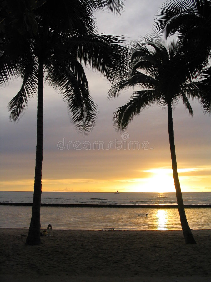 Sunset Waikiki Obrazy Royalty Free