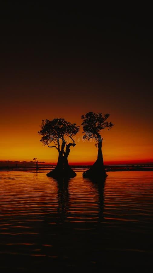 Sunset at walakiri beach. Sumba, indonesia, ocean, sea, shadow, travel, traveling, landscape stock photography