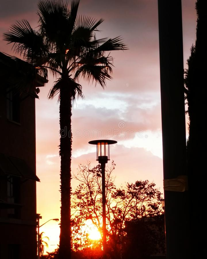 Sunset on the walk home royalty free stock photography