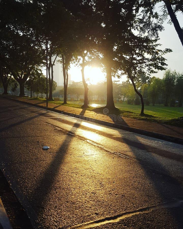 Sunset walk royalty free stock photography
