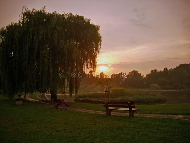 Sunset at Warsaw's Mokotow Field stock image