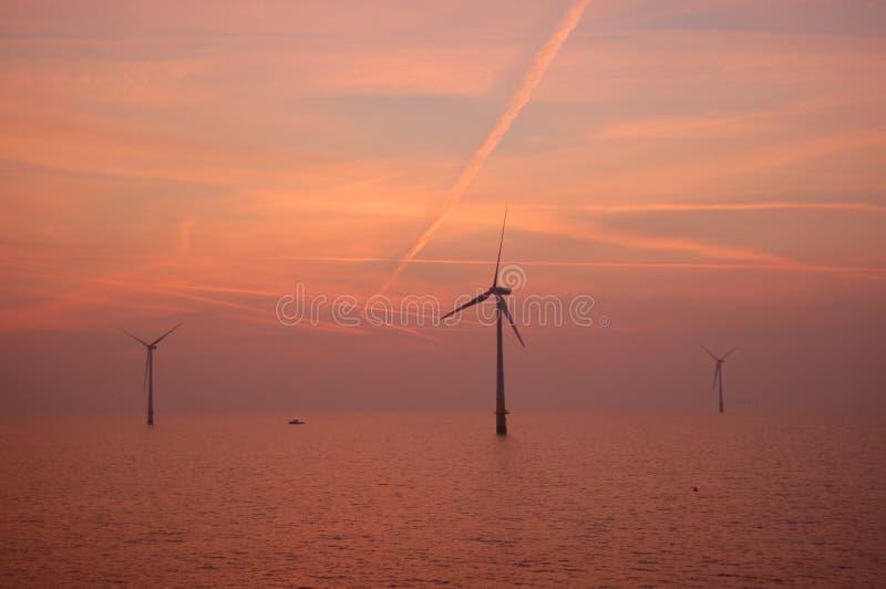 Download Sunset At Wind Park Kentish Flats Stock Image - Image: 13245625