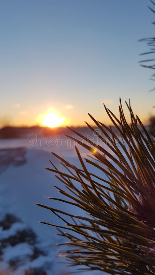 Download Sunset In Winter Stock Photo - Image: 83711569