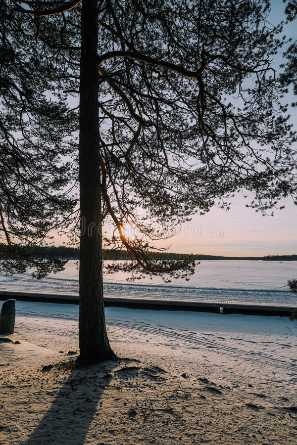 Sunset in winter royalty free stock images