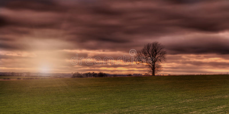 Sunset on the wolds Lincolnshire with tree royalty free stock photos